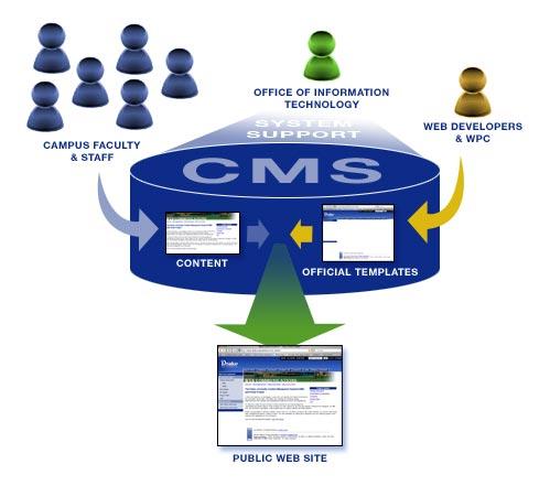 CMS-web desginer duba